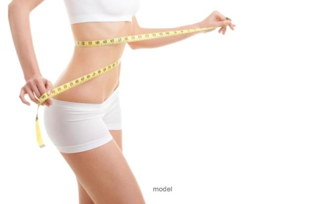 blog model logo